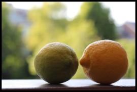Lemons 800